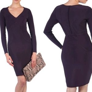 Ted Baker 'Aspin' body con dress
